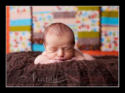 Hansen Newborn 12