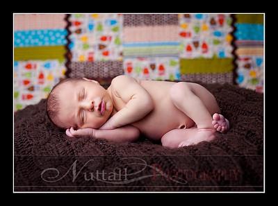 Hansen Newborn 10