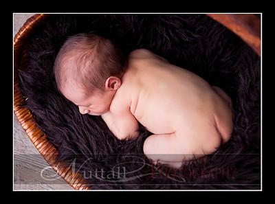Hansen Newborn 20