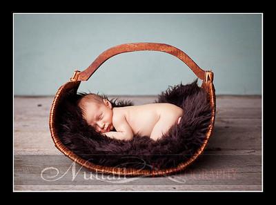 Hansen Newborn 15