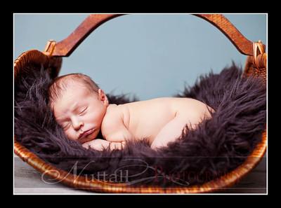 Hansen Newborn 17