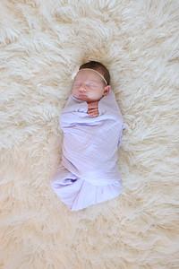 Harper's Newborn ~ 10 2014-0003