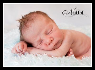 Jagger Newborn 149