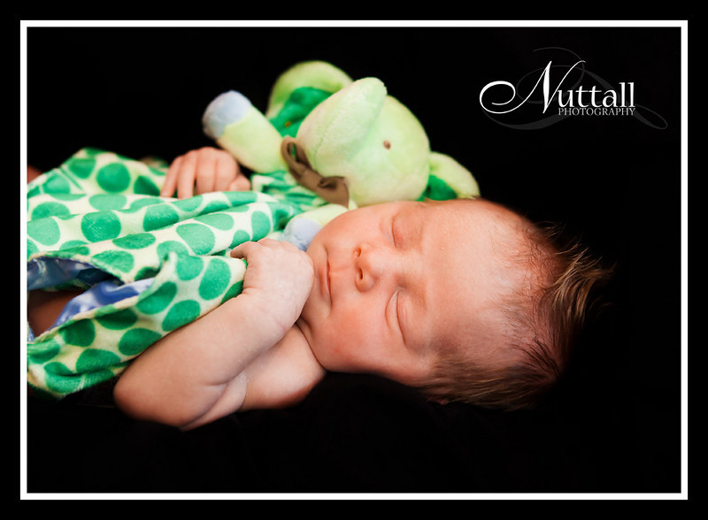 Jagger Newborn 255