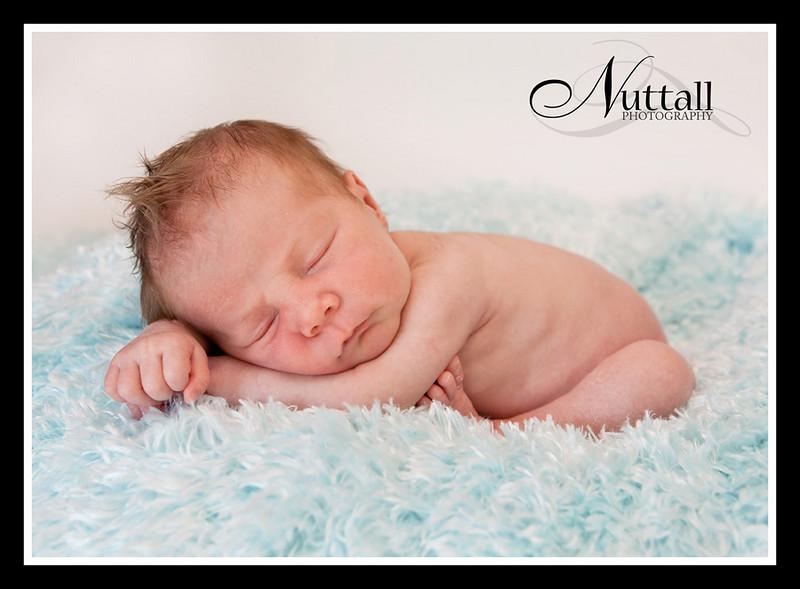 Jagger Newborn 144
