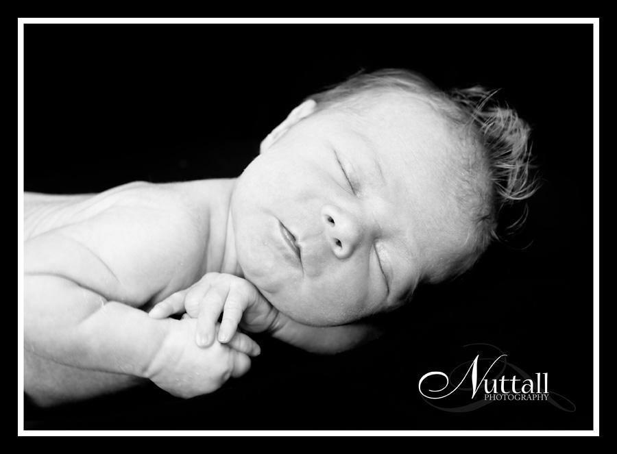 Jagger Newborn 041bw