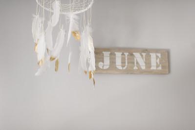 June's Newborn ~ 9 2015-0002
