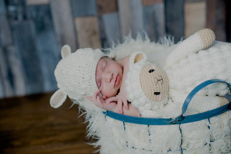 00001--©ADHPhotography2018--KasenFortin--Newborn--2018March23