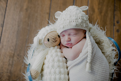 00021--©ADHPhotography2018--KasenFortin--Newborn--2018March23