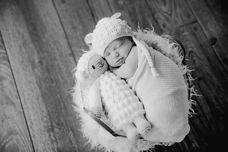 00014--©ADHPhotography2018--KasenFortin--Newborn--2018March23