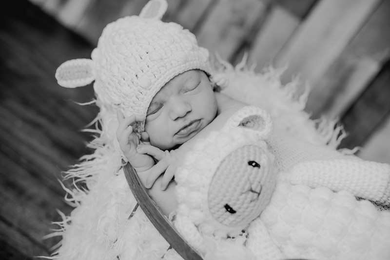 00008--©ADHPhotography2018--KasenFortin--Newborn--2018March23