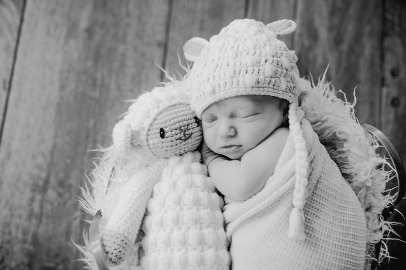 00022--©ADHPhotography2018--KasenFortin--Newborn--2018March23