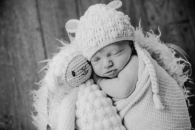 00018--©ADHPhotography2018--KasenFortin--Newborn--2018March23