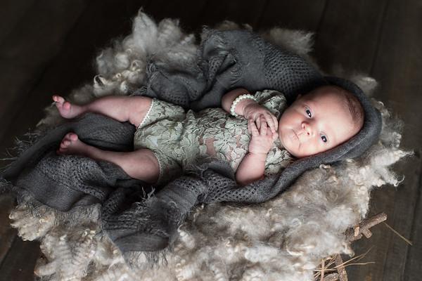 L. Sprunger Newborn