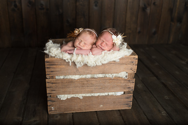 L. Twins Newborn