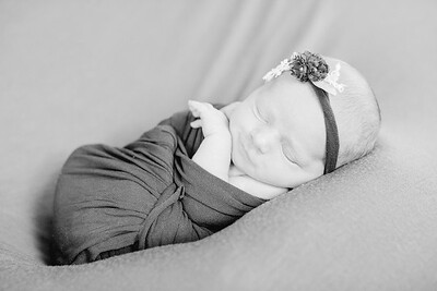 00008--©ADH Photography2017--LeahFette-NewbornSession