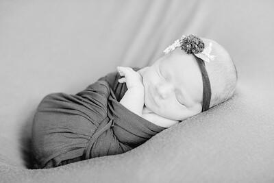 00006--©ADH Photography2017--LeahFette-NewbornSession