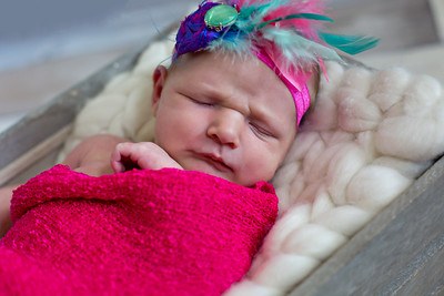 Lexi {newborn session}