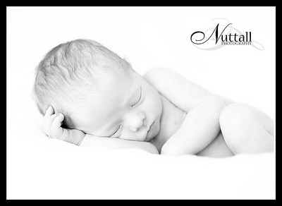 Lincoln Newborn 138bw