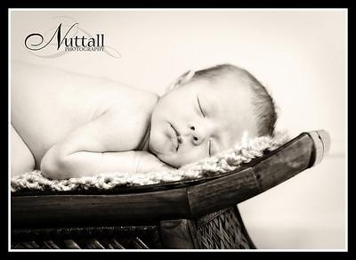 Lincoln Newborn 194sepia