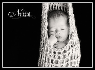 Lincoln Newborn 063bw