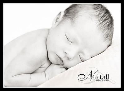 Lincoln Newborn 165bw