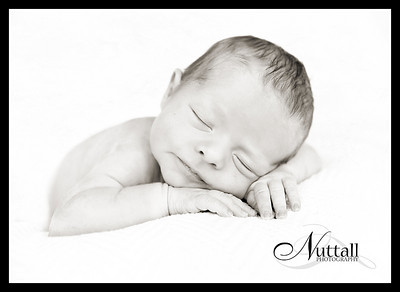 Lincoln Newborn 156bw