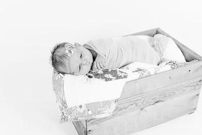 00012--©ADHPhotography2018--Loomis--Newborn