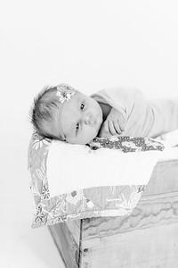 00006--©ADHPhotography2018--Loomis--Newborn