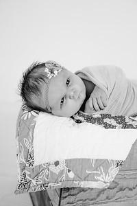 00022--©ADHPhotography2018--Loomis--Newborn