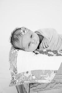 00024--©ADHPhotography2018--Loomis--Newborn