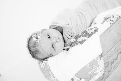00016--©ADHPhotography2018--Loomis--Newborn
