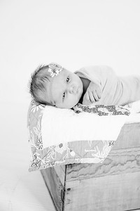 00020--©ADHPhotography2018--Loomis--Newborn