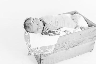 00014--©ADHPhotography2018--Loomis--Newborn