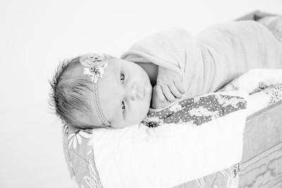 00018--©ADHPhotography2018--Loomis--Newborn