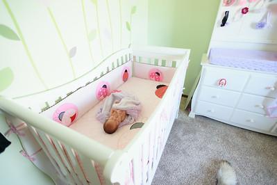 Lucy's Newborn 8 2014-19