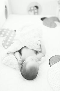 Lucy's Newborn 8 2014-6