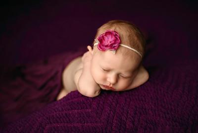00068--©ADHPhotography2020--MaddynSharp--Newborn--February21