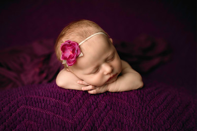 00067--©ADHPhotography2020--MaddynSharp--Newborn--February21