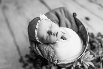 00121--©ADHPhotography2020--MaddynSharp--Newborn--February21bw