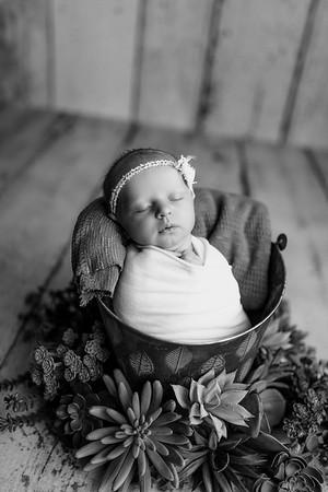 00124--©ADHPhotography2020--MaddynSharp--Newborn--February21bw