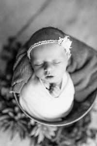 00120--©ADHPhotography2020--MaddynSharp--Newborn--February21bw
