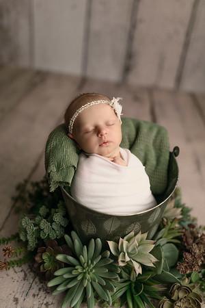 00124--©ADHPhotography2020--MaddynSharp--Newborn--February21