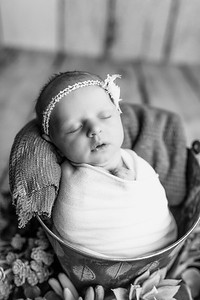 00125--©ADHPhotography2020--MaddynSharp--Newborn--February21bw