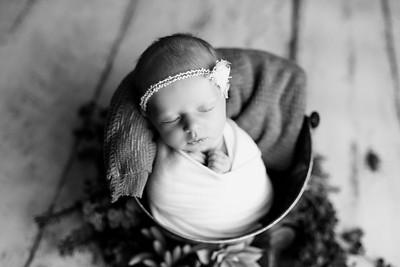 00127--©ADHPhotography2020--MaddynSharp--Newborn--February21bw