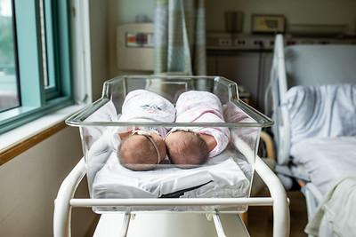 J Smith Twins Fresh 48-3194