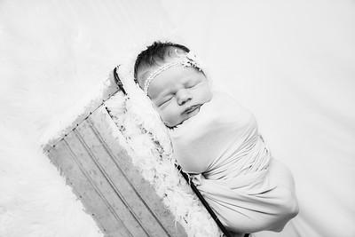 00009--©ADHphotography2019--MaggieJaneHardin--Newborn--March11
