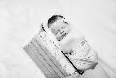 00013--©ADHphotography2019--MaggieJaneHardin--Newborn--March11
