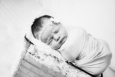 00003--©ADHphotography2019--MaggieJaneHardin--Newborn--March11