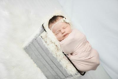 00014--©ADHphotography2019--MaggieJaneHardin--Newborn--March11